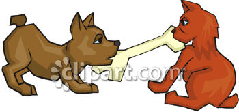 Dog And Cat Fighting Over A Bone