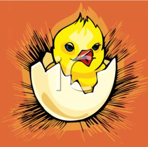 Clipart of a hatching chick