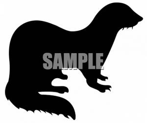 Silhouette Of A Ferret