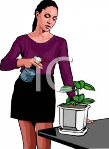 Woman With Spray Bottle and Plant