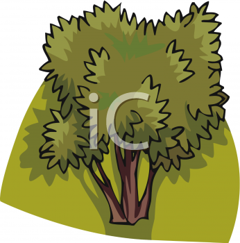 clip art tree. This is a clipart picture of a