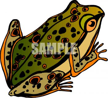 dotted toad royalty free clip art image rh clipartguide com mario toad clipart toad clipart images