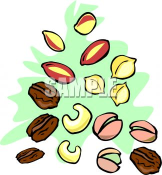 Various Types of Nuts Clip Art