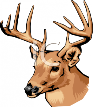 deer head royalty free clipart image rh clipartguide com deer head clip art black and white deer head clip art free