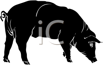 Silhouette of a Pig with It's Snout Down