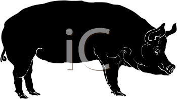Hog Silhouette - Royalty Free Clipart Picture