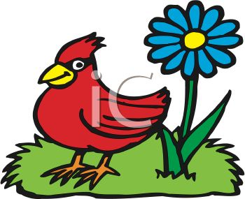 Red Bird and a Blue Flower