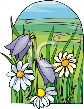 Bluebells and Daisies Growing in a Field