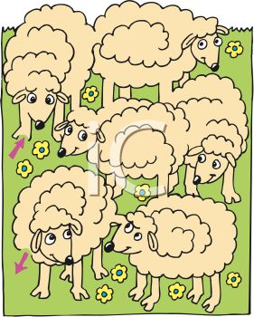 Herd of Cartoon Sheep