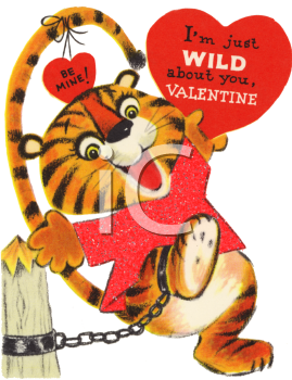 Vintage Valentine Card Showing a Chained Tiger  Royalty Free