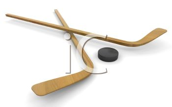 3D Hockey Sticks and Puck