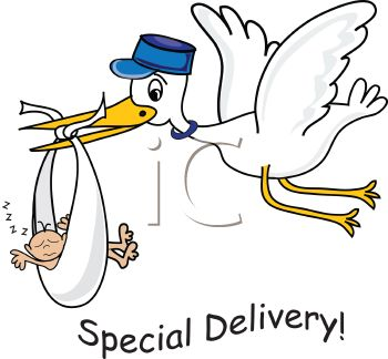 Stork Bringing Home Baby with Special Delivery Text