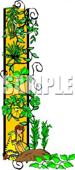 Ivy and Vines Border