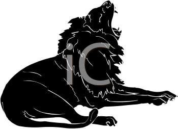 Silhouette of a Lion Yawning