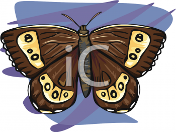 Royalty Free Clip Art Image: A Large Moth