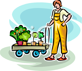 Woman Pulling a Cart of New Shrubs to Plant in Her Yard