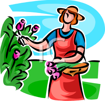 Lady Cutting Tulips in Her Garden