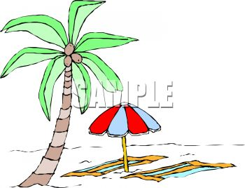 Palm Tree and a Beach Umbrella and Towels