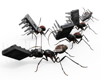 3D Ants Carrying Computer Chips
