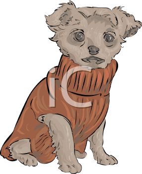 Yorkie Puppy Wearing a Sweater - Royalty Free Clipart Picture