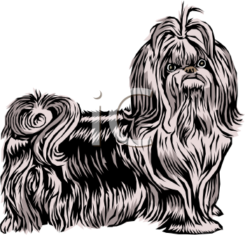 Cartoon Pekingese