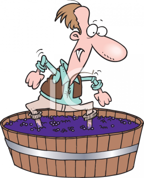 Man Stomping Grapes in a Barrel for Wine