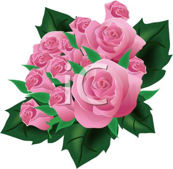 3D Pink Roses