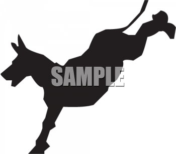 Silhouette of a Donkey Kicking