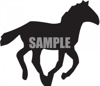 Silhouette of a Running Colt