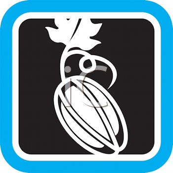 Produce Food Icon for a Persimmon
