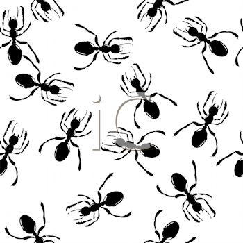 Black Ants Background