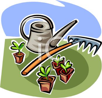 Watering Can with a Rake and Seedlings