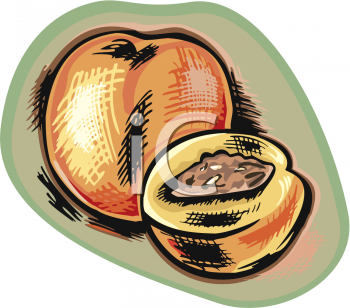 Stylized Peach with a Pit Showing