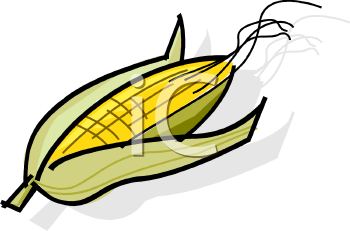 corn on the cob royalty free clipart image rh clipartguide com corn on the cob clipart free corn on the cob clipart free