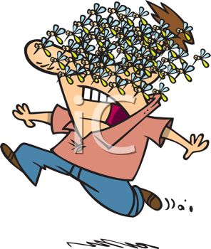 Cartoon of a Man Running and Screaming with a Swarm of Mosquitoes on His Face