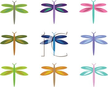 Collection of Whimsical Dragonflies