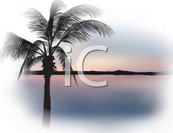 Realistic Tropical Beach Graphic