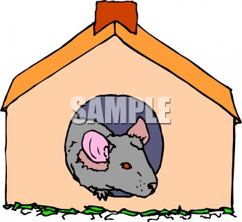 Little pet mouse or rodent in a mouse house