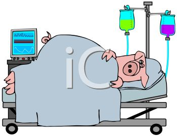 Royalty Free Clip Art Image: Cartoon of a Pig in a Hospital Bed with IVs