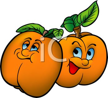 Cartoon of Healthy Food-Juicy Ripe Apricots