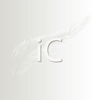 Soft Feather on a White Background