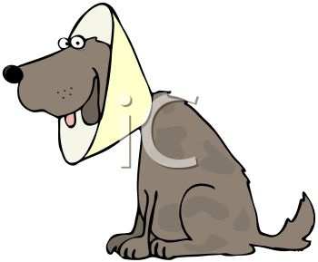 Cartoon of a Dog Wearing a Protective Cone Around His Neck
