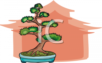 Artistic Bonsai Tree in a Shallow Dish