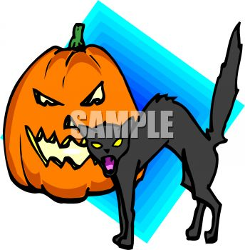 Hissing Black Cat and Jack-O-Lantern on Halloween