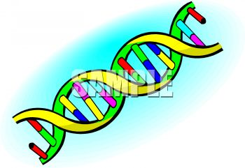 Royalty free clip art image dna double helix