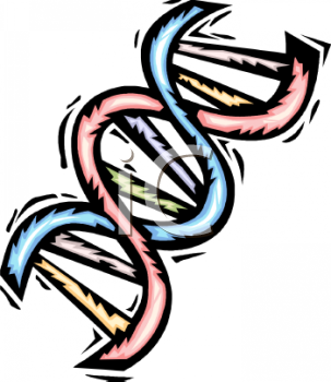 dna double helix royalty free clipart image rh clipartguide com dna clipart black and white dna clipart black and white