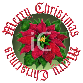 Christmas Decal of a Poinsettia with Merry Christmas Text