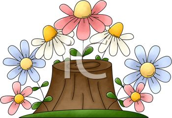 Wildflowers Growing on a Tree Stump
