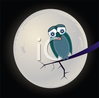 Sad Owl Perched on a Branch in Front of the Full Moon