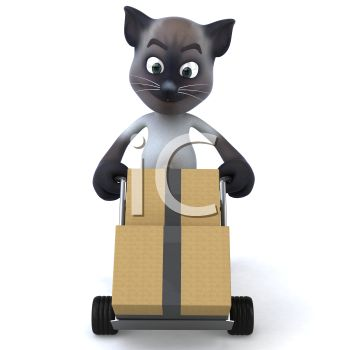 3D Siamese Cat Moving Boxes on a Hand Truck